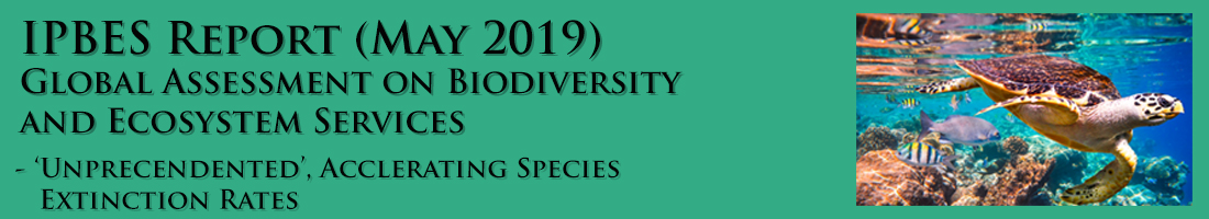Science - Breaking - Intergovernmental Panel on Biodiversity and Ecosystem Services Report - May 2019